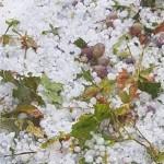 Wetter: Hagel warf auf Zypern